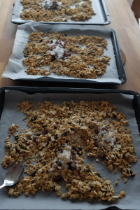 granola cooked on baking trays